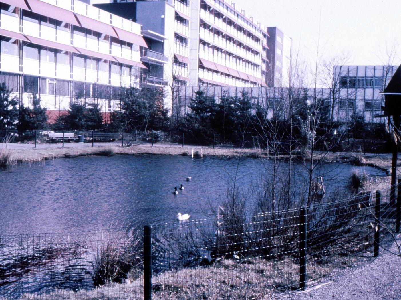 Dia_Jeanne-018