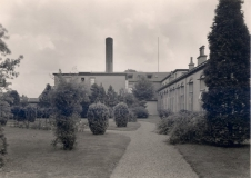 juliana1936tuin2eklasse02